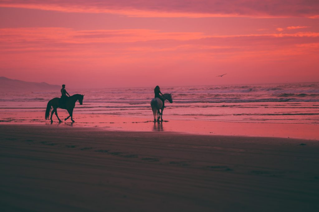 Proposal Spots in Cape Town   Pink sunset on horseback